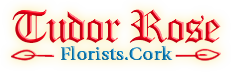 tudor-rose-florist-cork-logo
